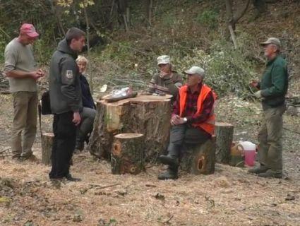 З дозволами не «парилися»: луцькі комунальники перетворили у дрова єдиний ботанічний сад (відео)