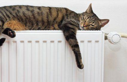 Луцьк і «тепло»: у соцмережах лучани активно діляться, в кого вже включили опалення, а хто досі мерзне