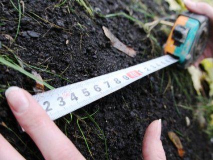 На Волині фермерське господарство змусили повернути державі земельну ділянку вартістю 3 мільйони