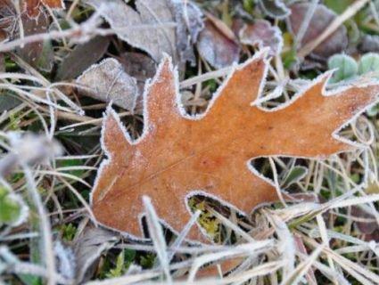 Перший нормальний сніг випаде 27 листопада