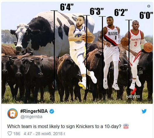 корова-баскетболіст