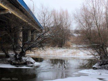 Засніжений Луцьк очима фотографа: мороз скував річки, а червоні перла горобин одягнули білі кожушки (фото)