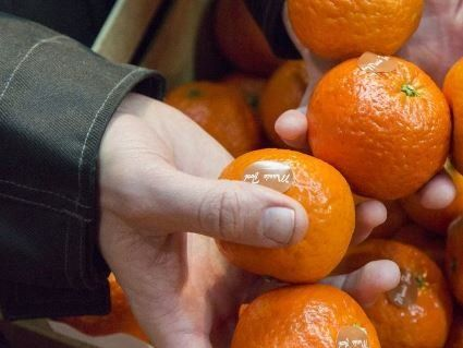 Дешеві – не завжди якісні: в Україну привезли дивні єгипетські мандарини