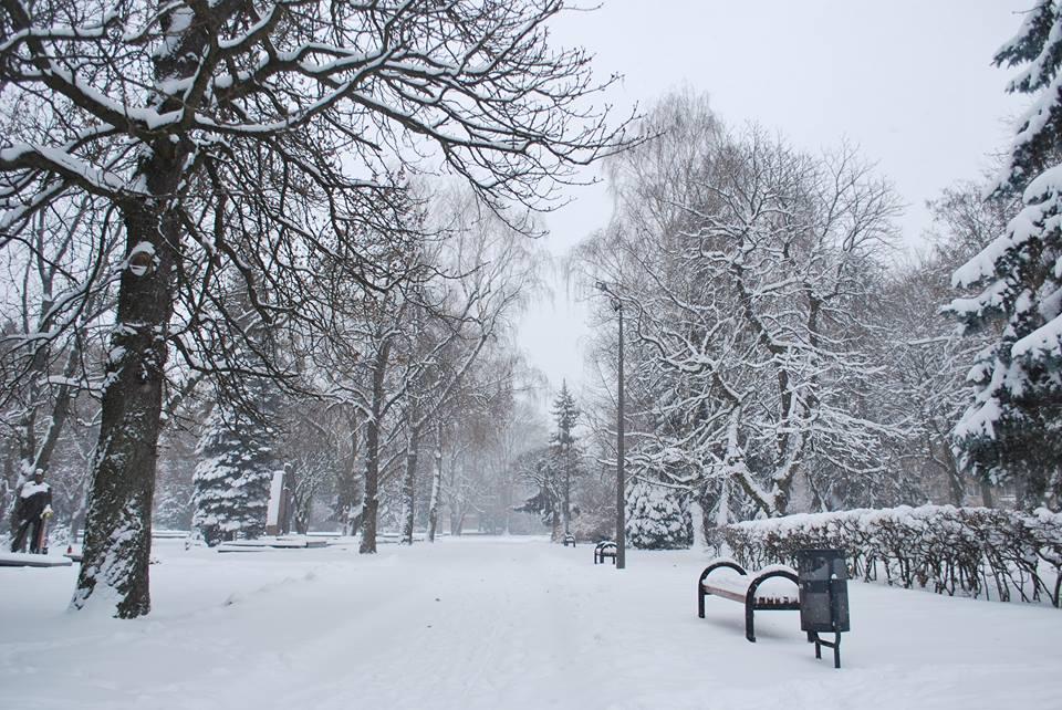 Луцьк зима