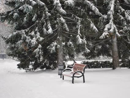 Чаруючий зимовий Луцьк (фото)