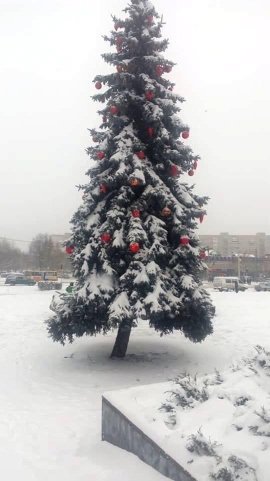 новорічне диво в Луцьку