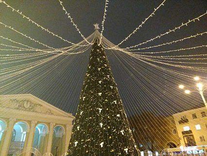 Найвища ялинка в Україні: яке місто лідирує