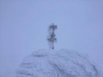 Карпати замело: сніг досягає майже метра фото 2