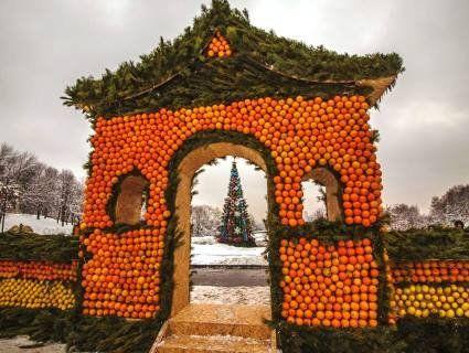 «Стільки фруктів перевели!»: людям не сподобалися святкові декорації у Києві зі справжніх цитрусів (фото)