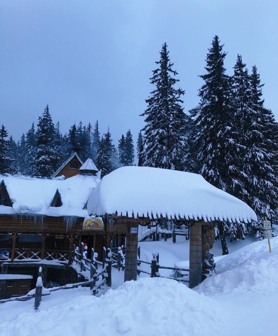 Метровий шар снігу в Карпатах