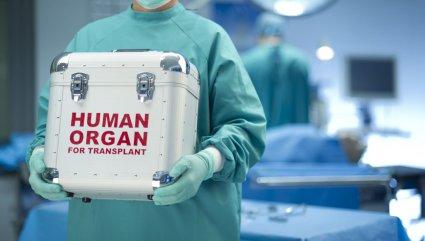 підсумки року трансплантація