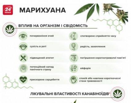 легалізація марихуани в україні