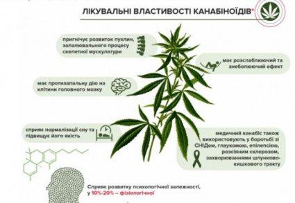 марихуана лікувальні властивості