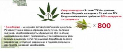садовий про марихуану
