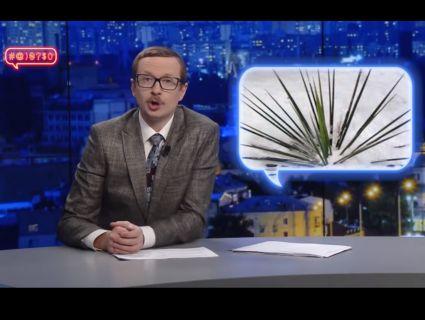 «Все, що на «Ю» і жіночого роду, – несе катастрофу»: Майкл Щур висміяв новину про «вбивчу» юку в дитсадках Луцька (відео)