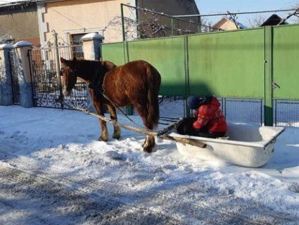 Тест-драйв старій ванні: на Закарпатті помітили дивний транспортний засіб (фото)
