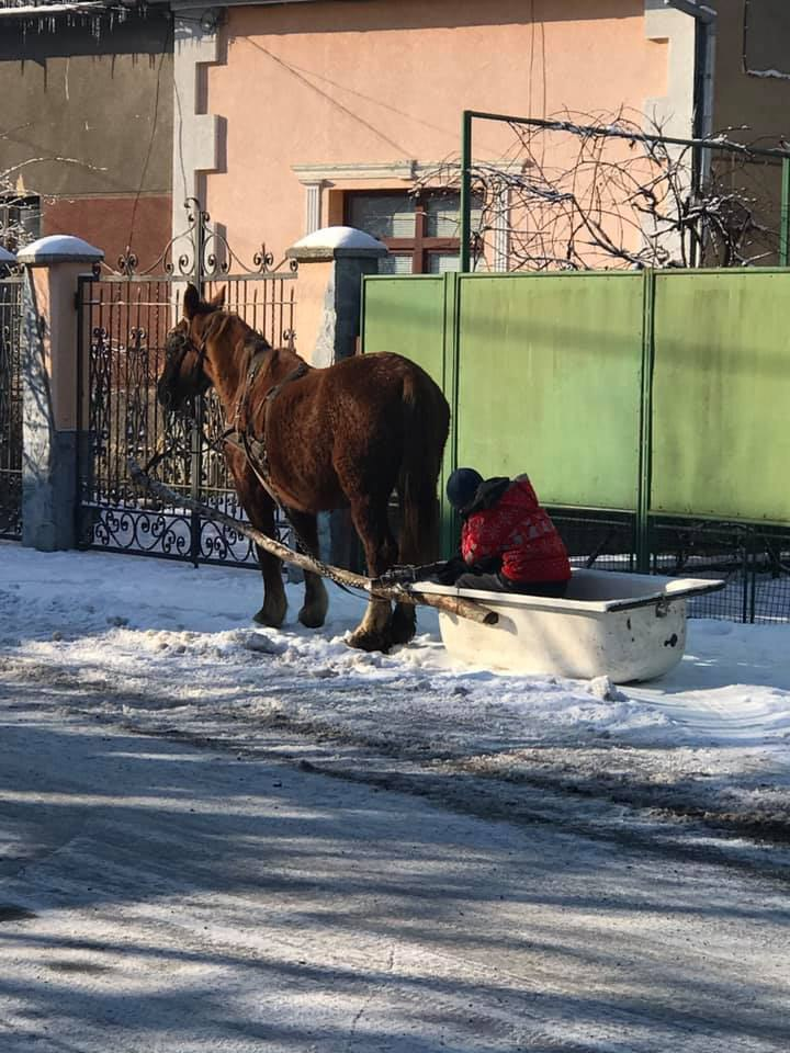 дивний транспорт