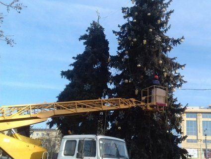 У Луцьку розбирають новорічні ялинки (ФОТО)