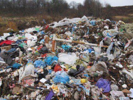 У Луцьку розберуться із забрудненням навколишнього середовища на брищенському полігоні