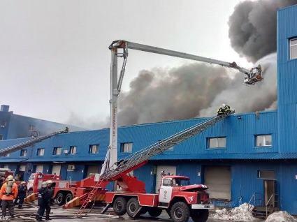 Вже добу  триває пожежа на складах у Києві – рятувальники попереджають про небезпеку (відео)