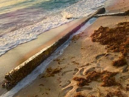 У Флориді море винесло 6-метровий хрест (фото)