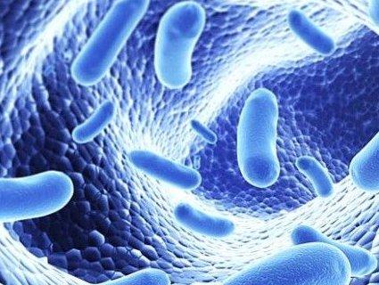 700 тисяч смертей щорічно: до України дісталися бактерії-вбивці