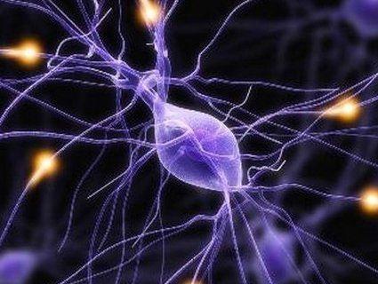 Вчені відкрили у клітин режим зомбі