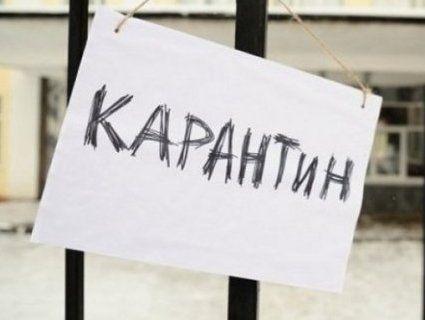 Запорізькі школи і дитсадки закривають на карантин