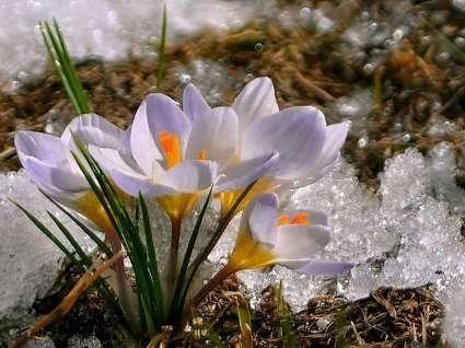 3 березня: чому сьогодні варто роздавати милостиню