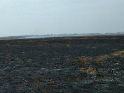 Понад 60 пожеж за тиждень: на Волині масово палять сухостій