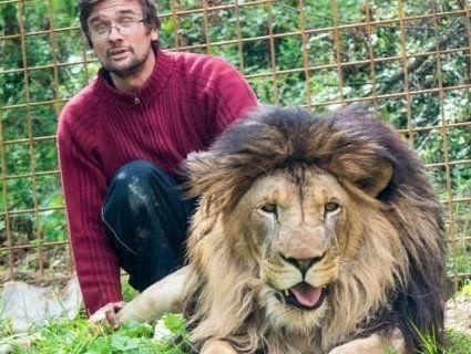 «Домашній» лев загриз свого господаря
