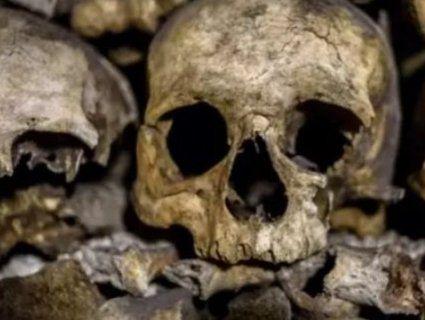 В Instagram процвітає торгівля людськими кістками