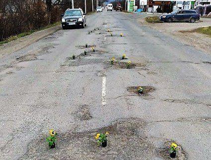 Квітковий флешмоб: для Порошенка на Закарпатті висадили вазони на дорогах (фото)