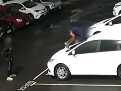 Шалені збитки: діти пошкодили 40 автівок Toyota (відео)