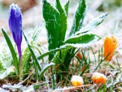 Погодні коливання: попереджають про морози на наступному тижні