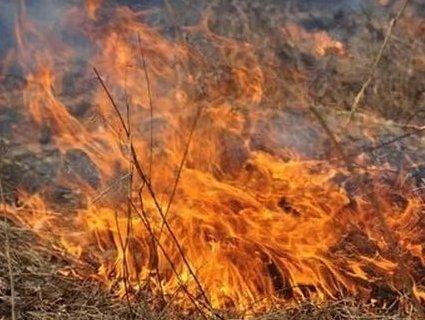На жителя приміських Угорників склали протокол за спалювання сухої трави