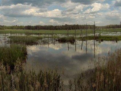Мальовниче водосховище на Рівненщині (фото)