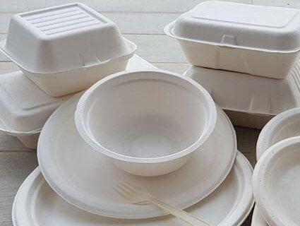Європарламент прийняв законопроект про заборону пластикового посуду