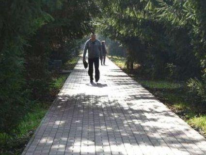 У луцькому парку відремонтують дві алеї