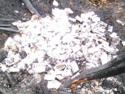 На Волині контрабандисти спалили 12 ящиків сигарет (фото)