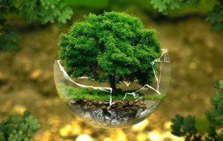 Лучан запрошують на екологічний фестиваль