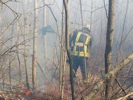 126 пожеж: на Волині гасили сухостій і торф'яник