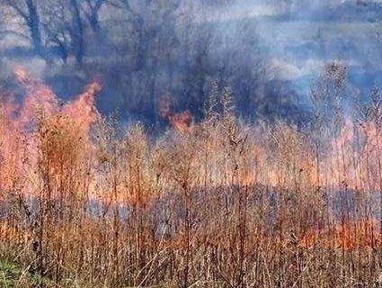 Волинянин палив суху траву – загорілася господарська споруда
