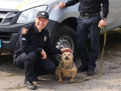 Соціальний проект: у Луцьку патрульні фотографувалися із собаками