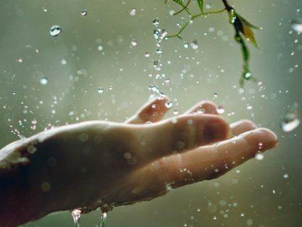 10 квітня: чому сьогодні дощ є добрим знаком