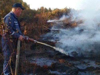 На Волині горять торфовища
