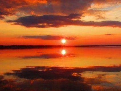 Краса, що вражає: природа весняного Світязя (фото)