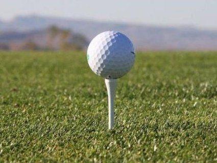 Літак упав на поле для гольфу – загинув пілот