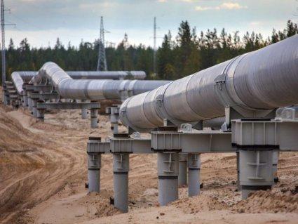 Білорусь повністю перекриє росіянам нафтопровід «Дружба»