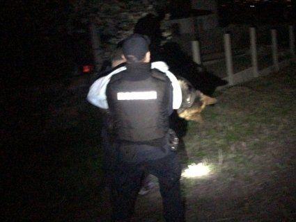 У Рівному копи застрелили пса, який загнав господаря на дерево (фото)